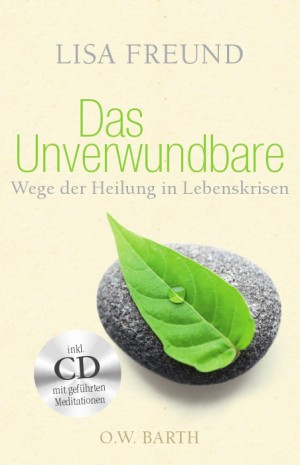 Das Unverwundbare, m. Audio-CD.