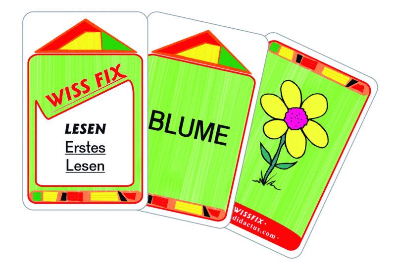 Wissfix Kartensatz
