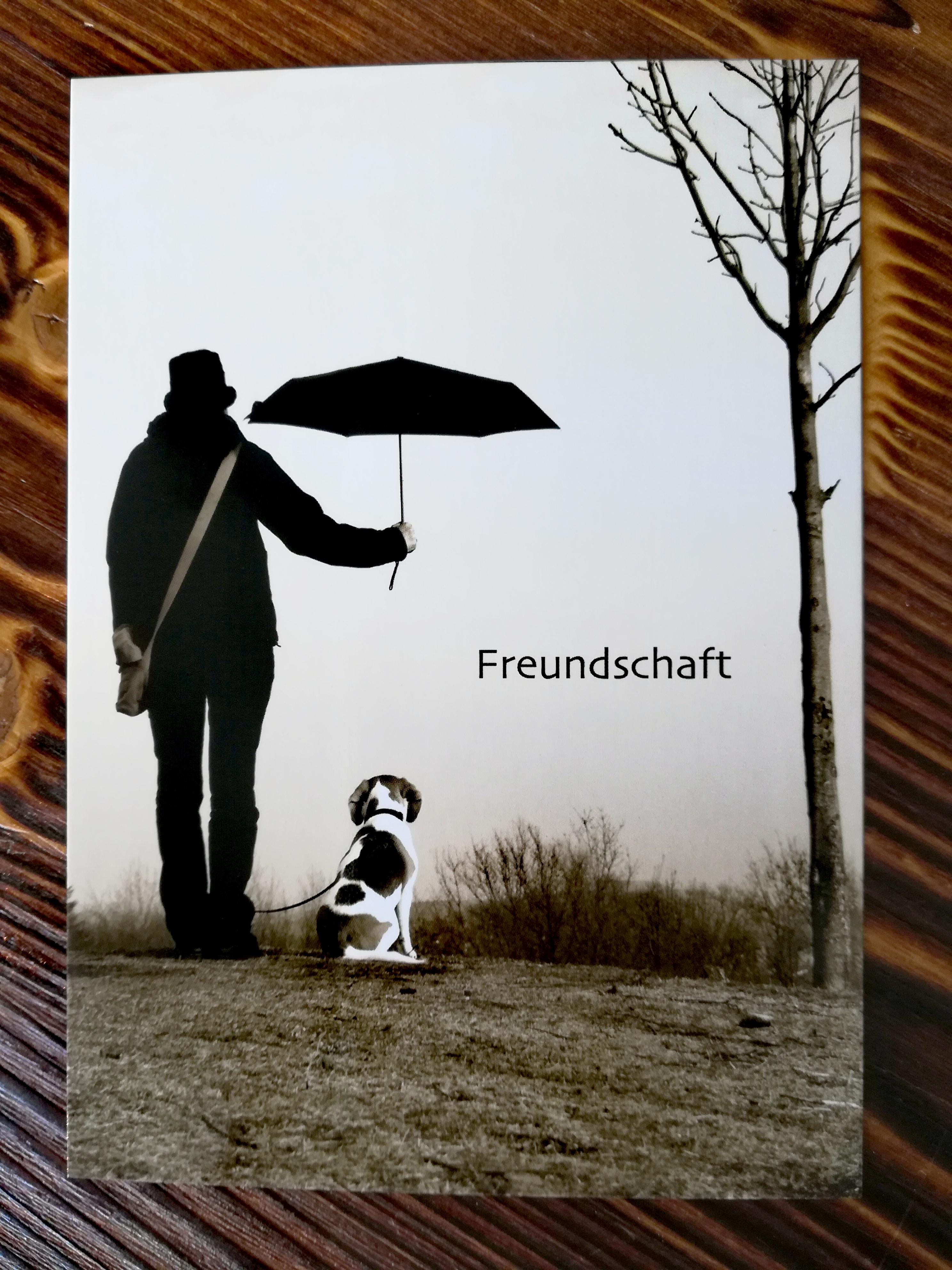 Freundschaft - Mann und Hund