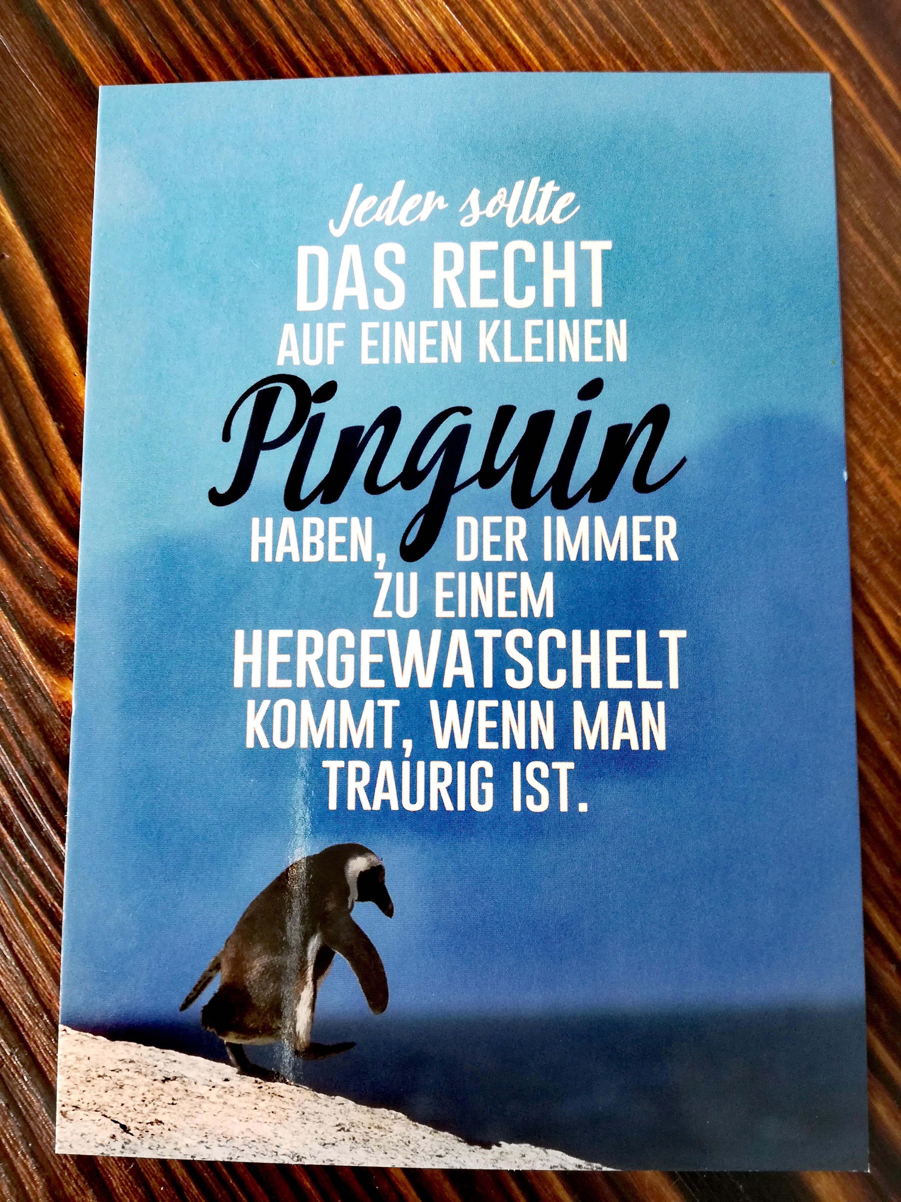Jeder sollte das Recht auf einen kleinen Pinguin haben, ...