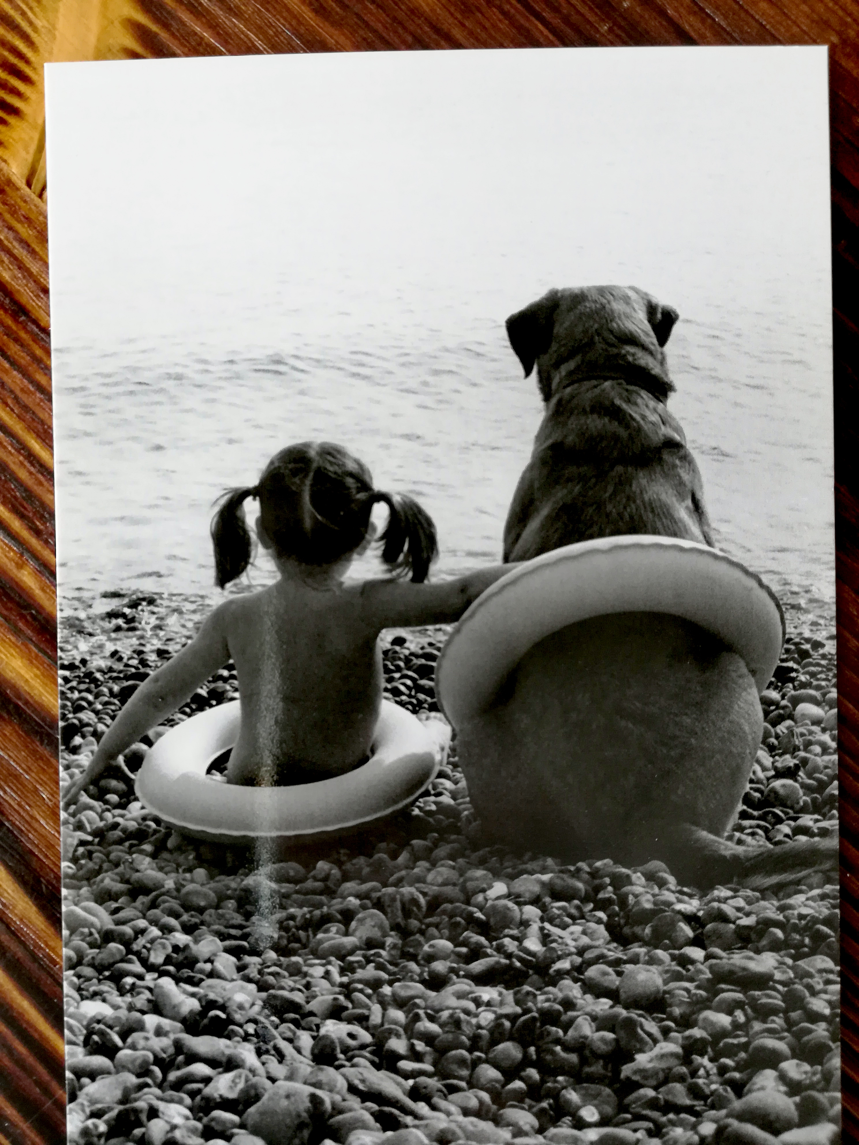 Freunde am Meer - Mädchen mit Hund