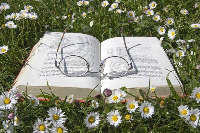 Gutschein Motiv: Buch mit Brille