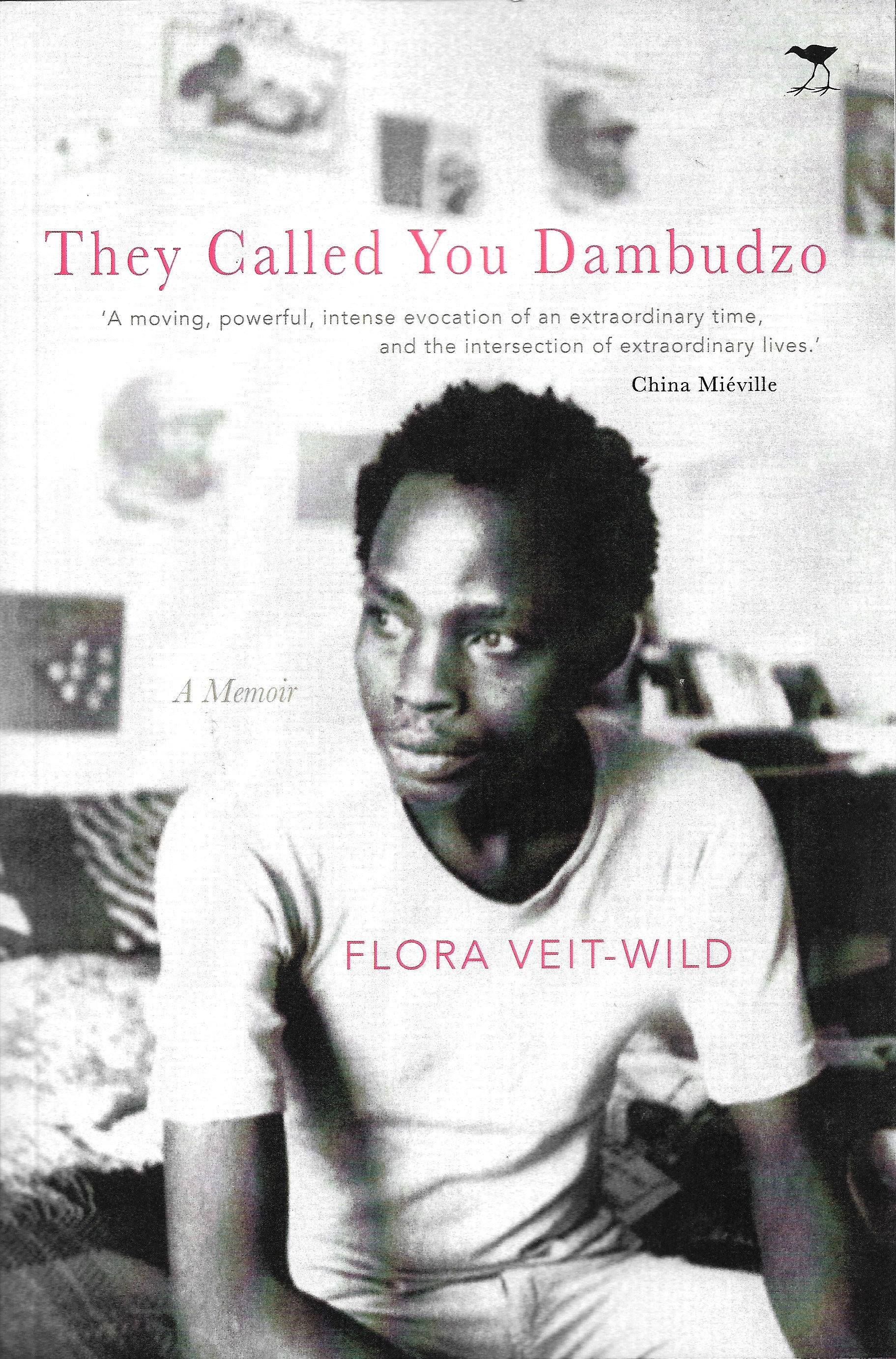 They Called You Dambudzo - Cover