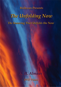 DVD: The Unfolding Now-The Knowing that Unfolds the Now (PAL-EU)