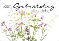 Zum Geburtstag alles Liebe - Frühlingsblumen gemalt