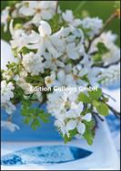 Weisse Blüten