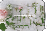 Blüten auf Vintage-Holz