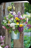 Frühlingsblumen und -blüten