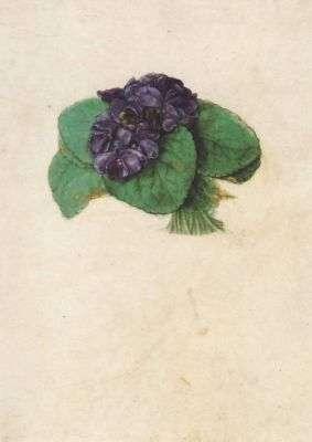 Veilchenstrauss, 1505