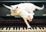 Kittens - Kätzchen auf Klavier