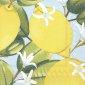 Lemon Time light blue