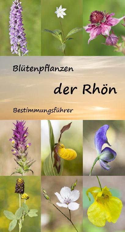 Blütenpflanzen der Rhön - Cover
